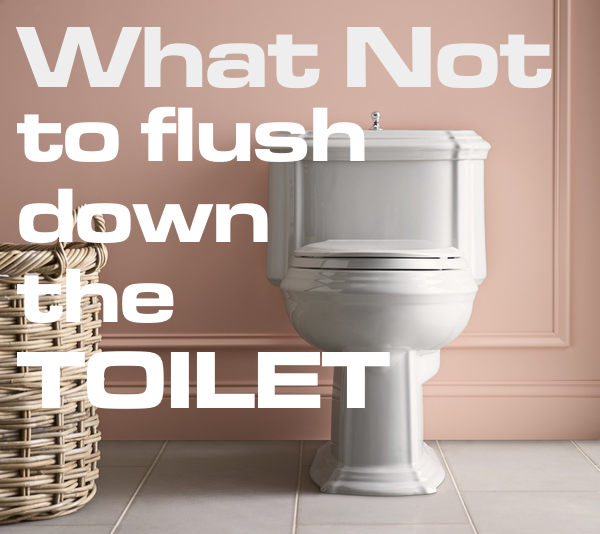 dont flush these down your toilet
